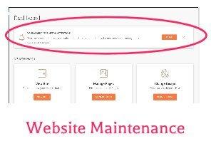 website maintenance - wordpress screen showing updates needed